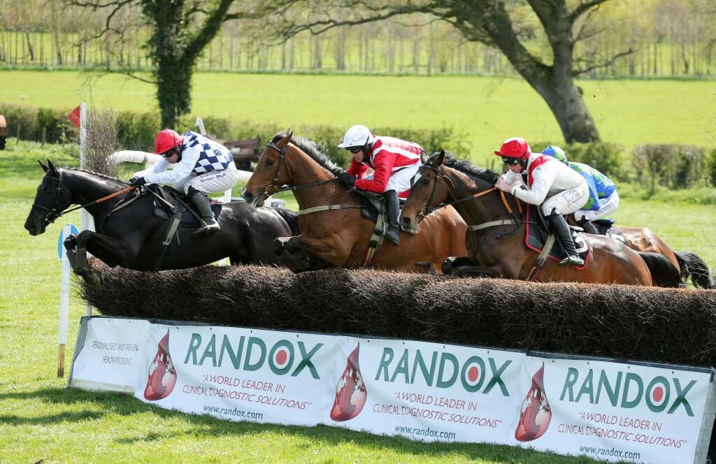 Press Eye - Belfast - Northern Ireland - 25th April 2015 - RANDOX KILLULTAGH POINT-TO-POINT.
